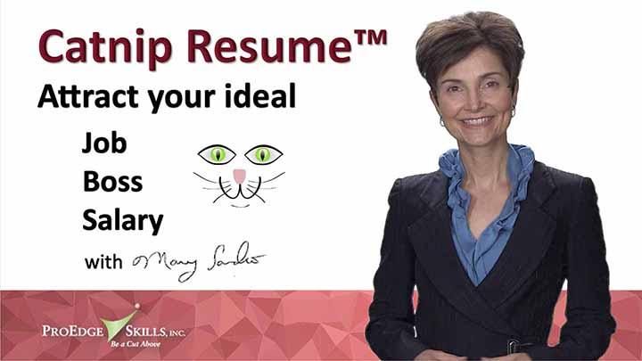 Catnip Resume